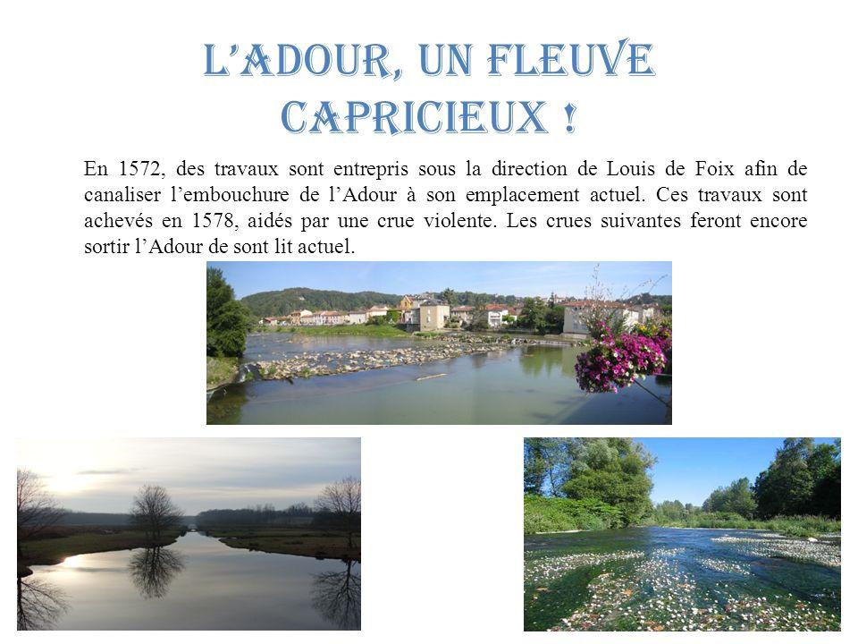 l'Adour, un fleuve capricieux !