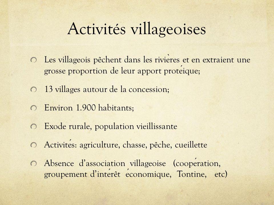 Activités villageoises