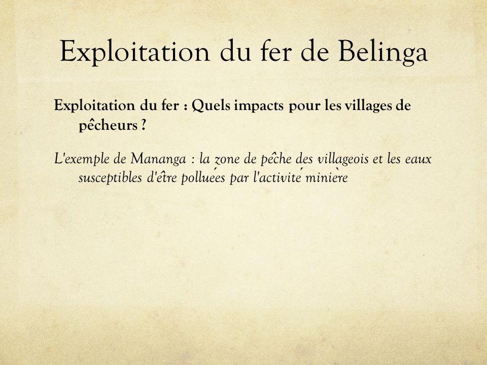 Exploitation du fer de Belinga