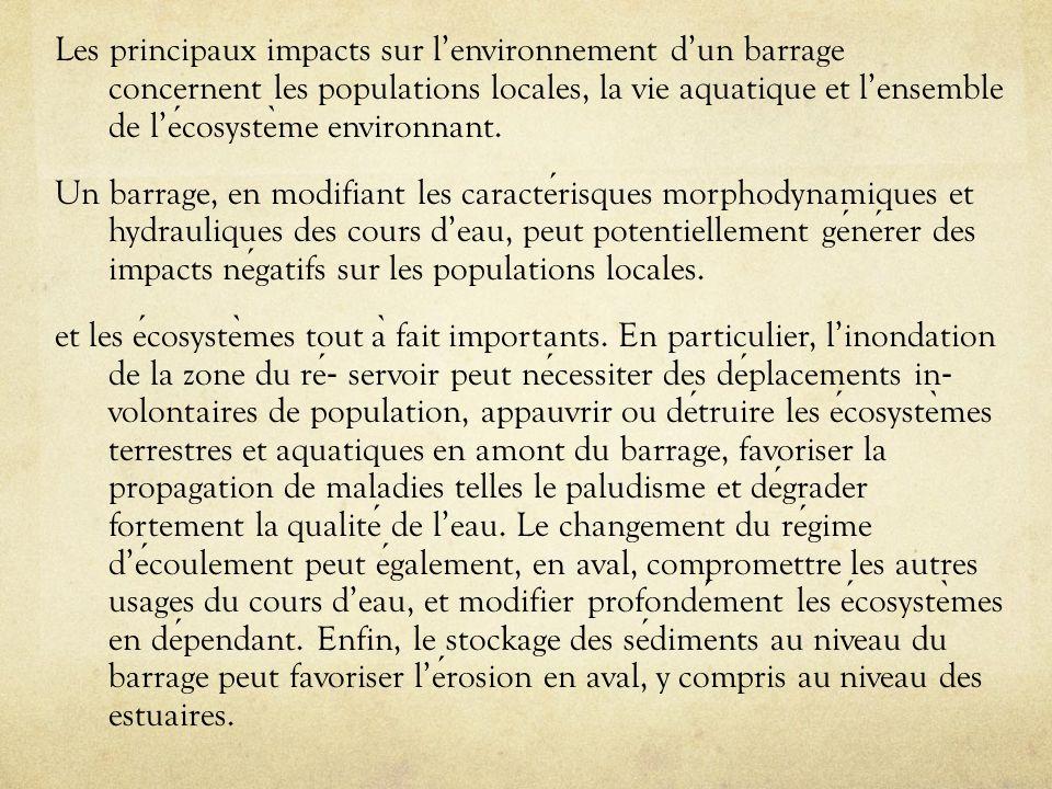 Les principaux impacts sur l'environnement d'un barrage concernent les populations locales, la vie aquatique et l'ensemble de l'écosystème environnant.