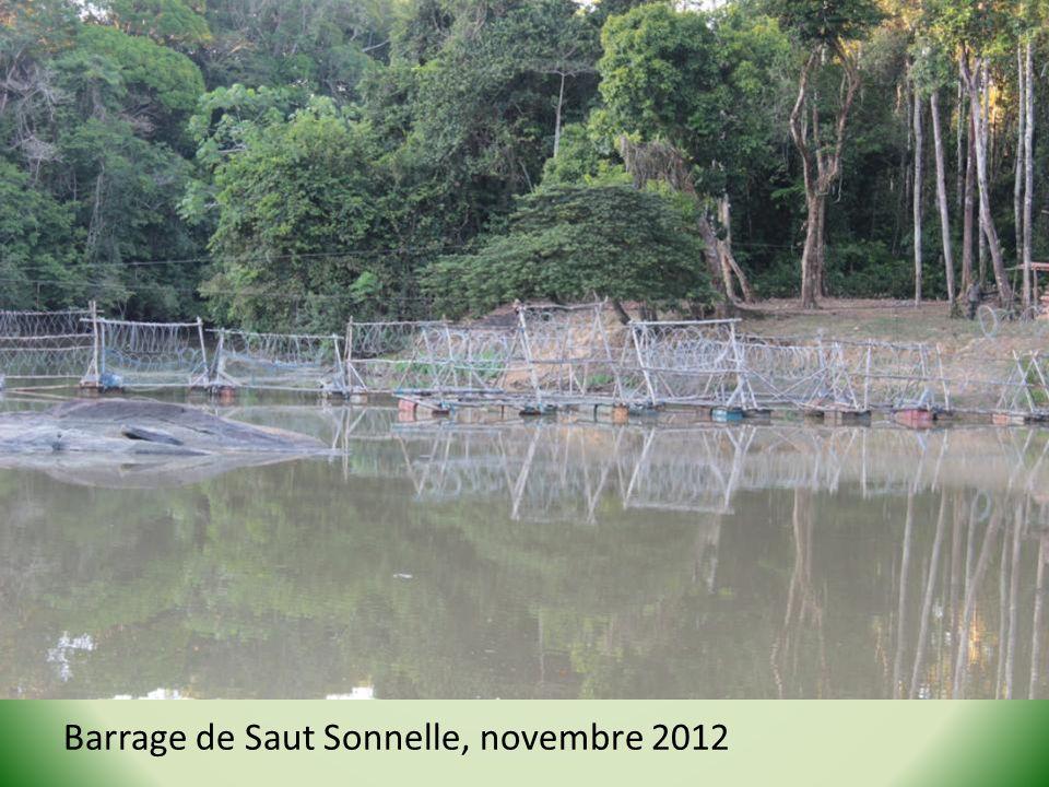 Barrage de Saut Sonnelle, novembre 2012