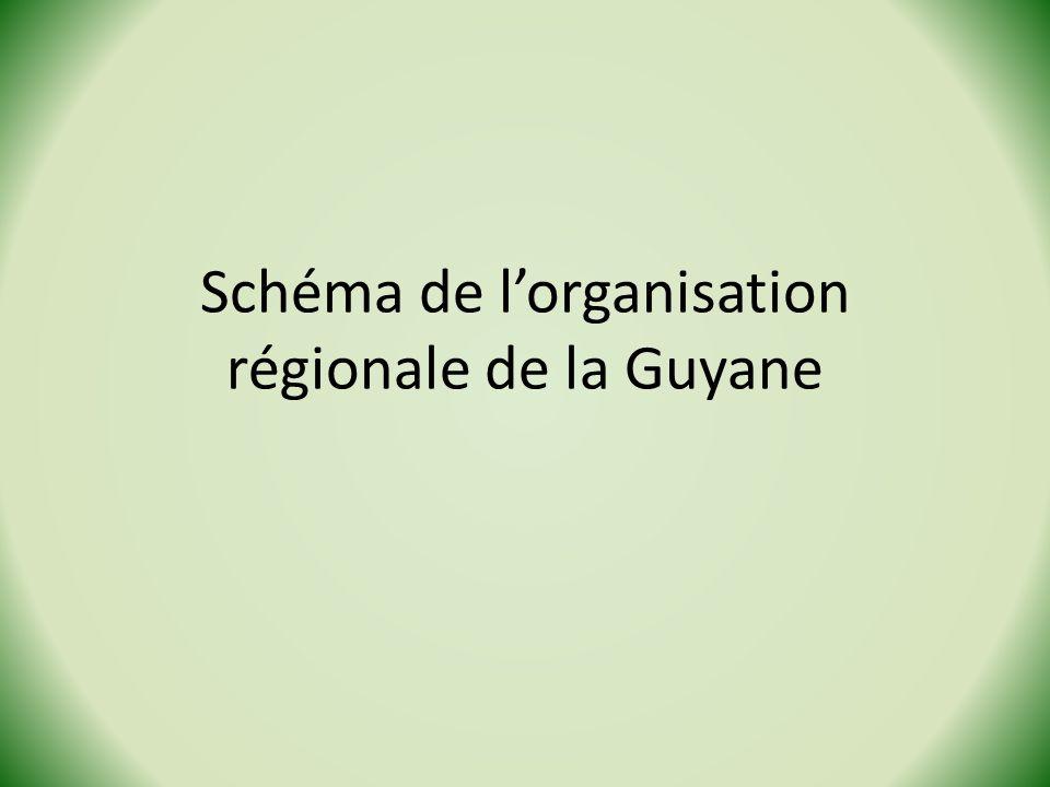 Schéma de l'organisation régionale de la Guyane
