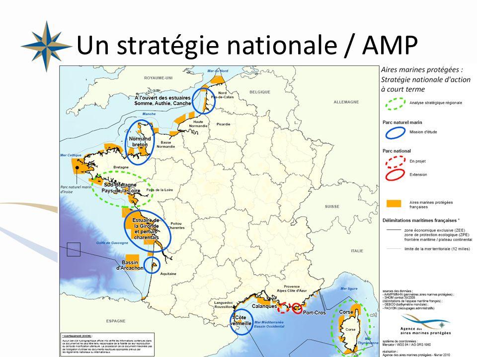 Un stratégie nationale / AMP