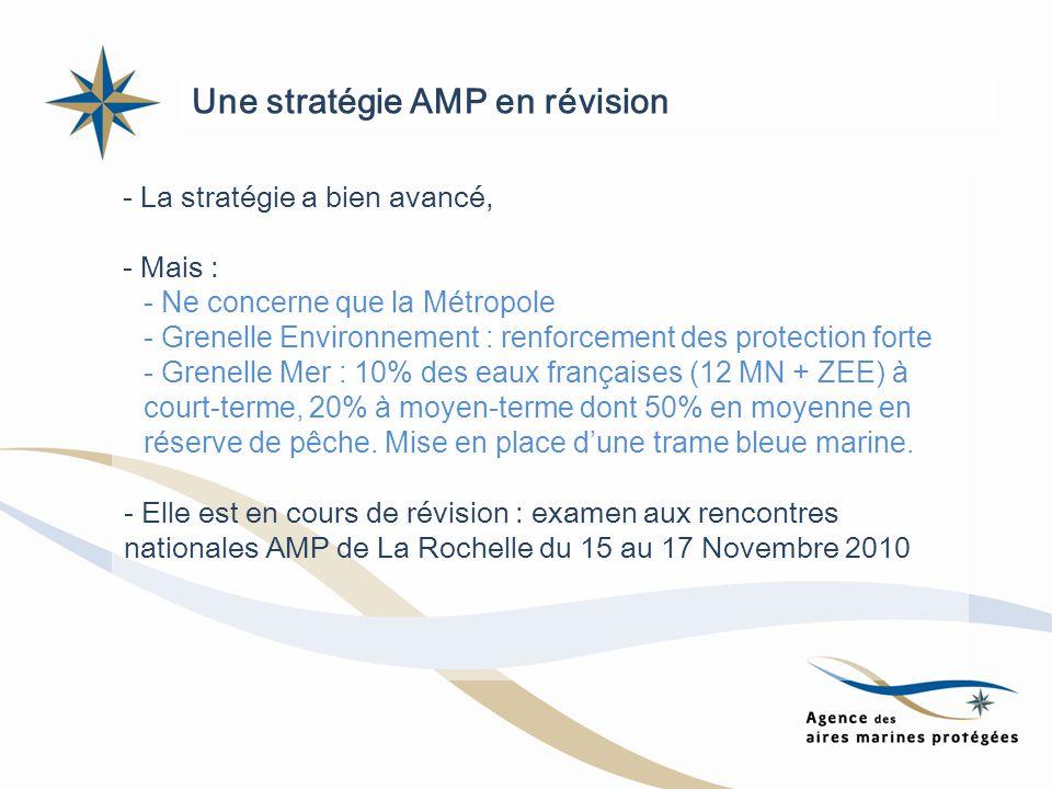 Une stratégie AMP en révision