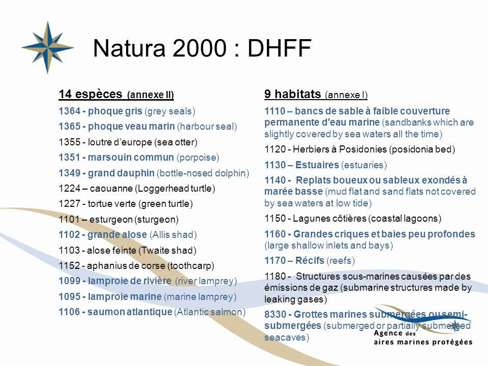 Natura 2000 : DHFF 14 espèces (annexe II) 9 habitats (annexe I)