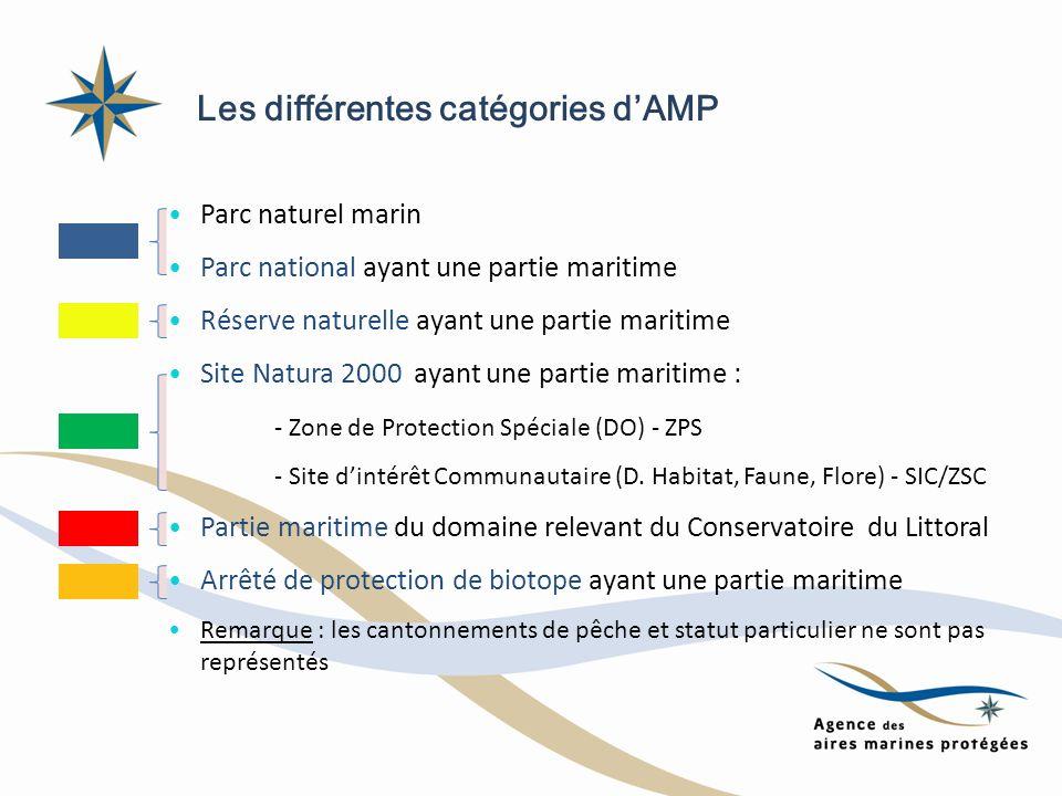 Les différentes catégories d'AMP