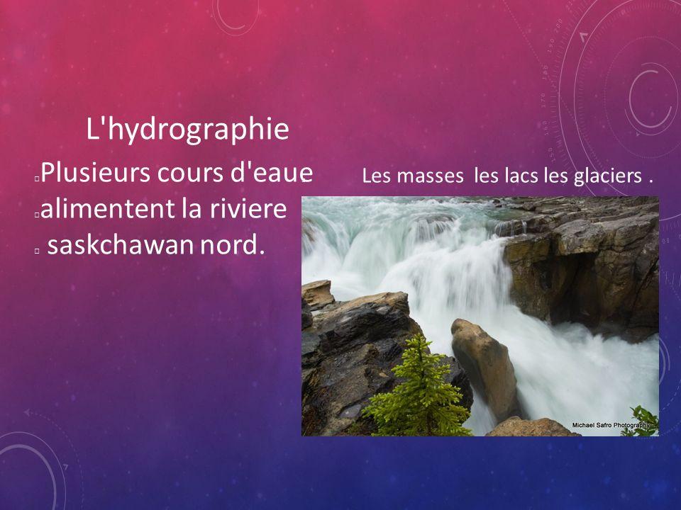 L hydrographie Plusieurs cours d eaue alimentent la riviere