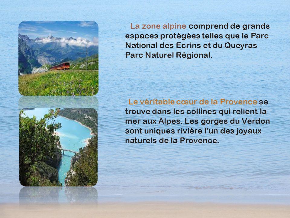 La zone alpine comprend de grands espaces protégées telles que le Parc National des Ecrins et du Queyras Parc Naturel Régional.