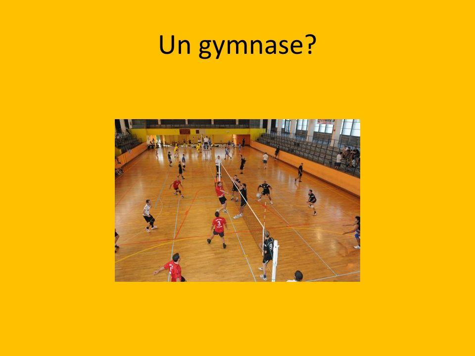 Un gymnase