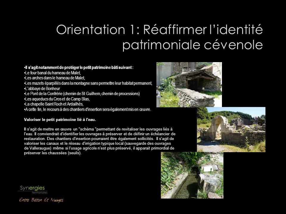 Orientation 1: Réaffirmer l'identité patrimoniale cévenole