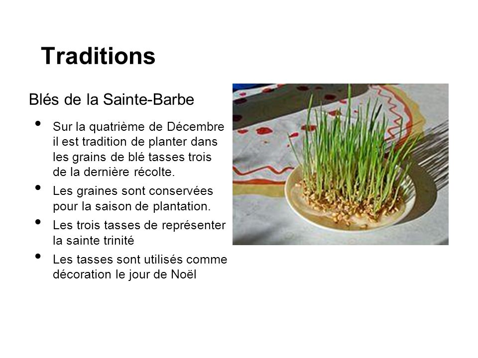 Traditions Blés de la Sainte-Barbe