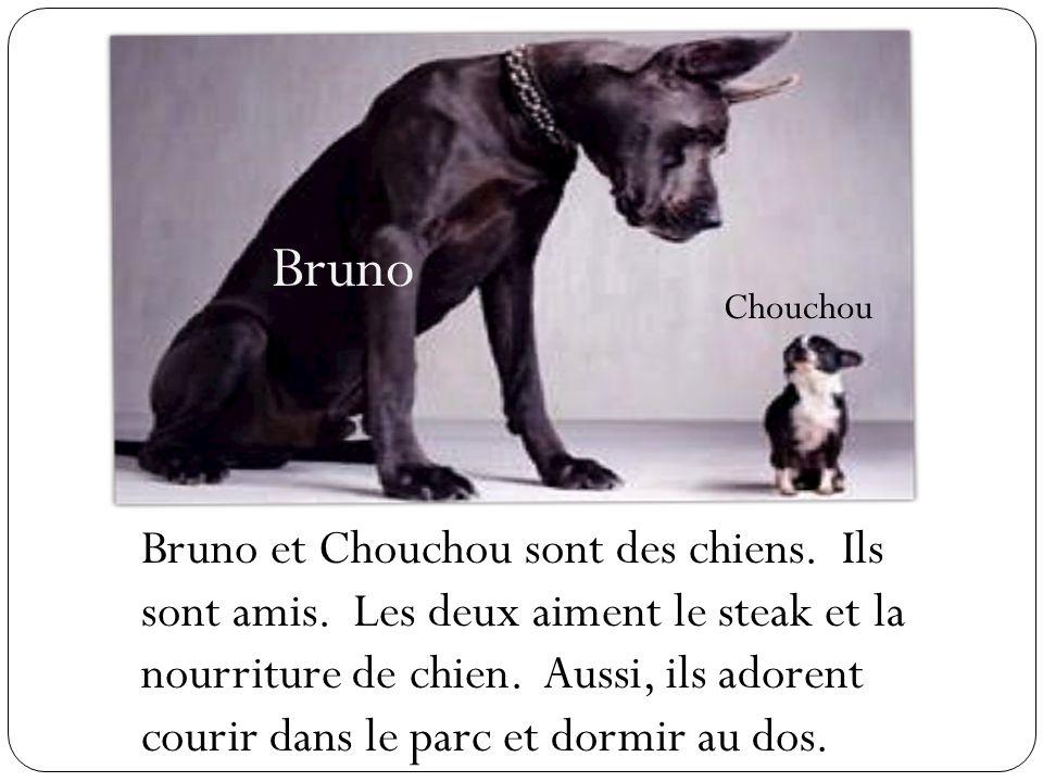 Bruno Chouchou.