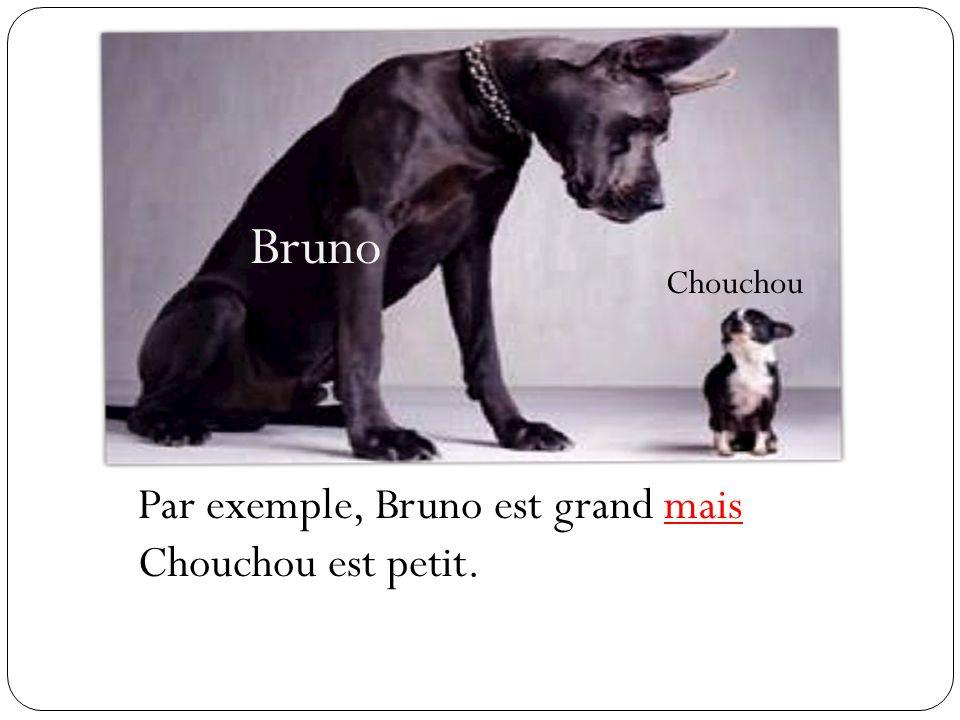 Bruno Chouchou Par exemple, Bruno est grand mais Chouchou est petit.