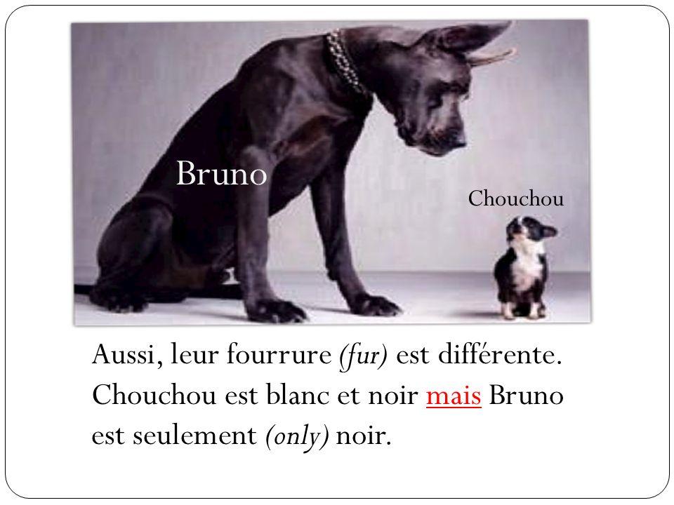 Bruno Chouchou. Aussi, leur fourrure (fur) est différente.