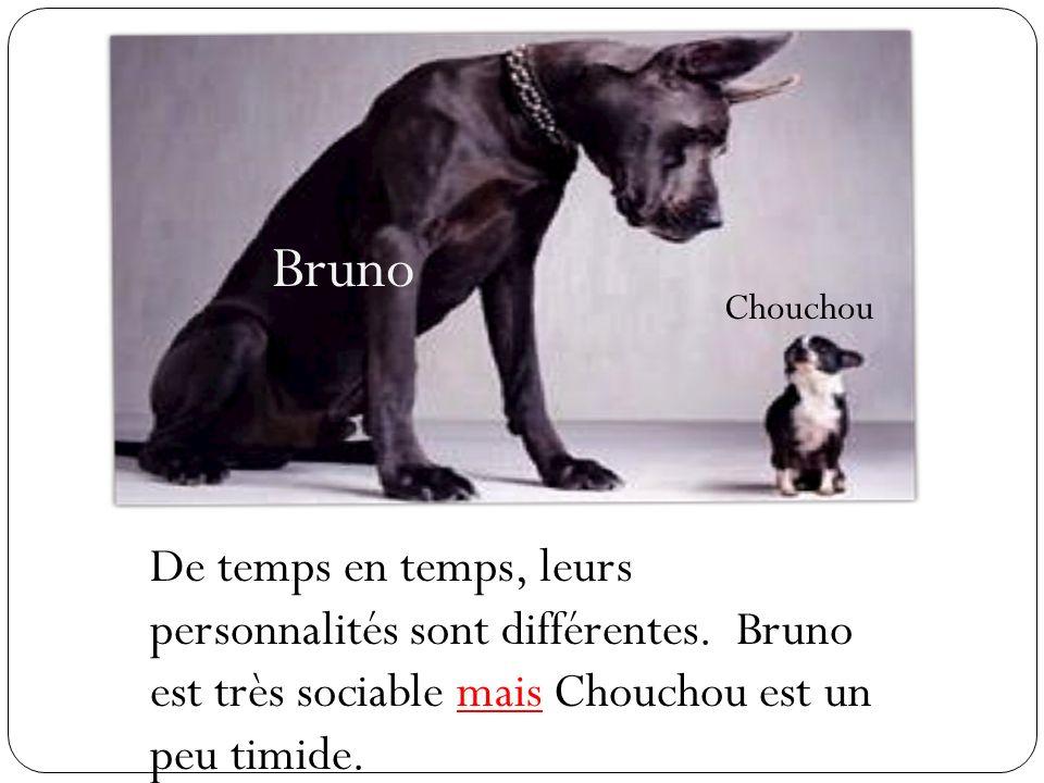 Bruno Chouchou. De temps en temps, leurs personnalités sont différentes.