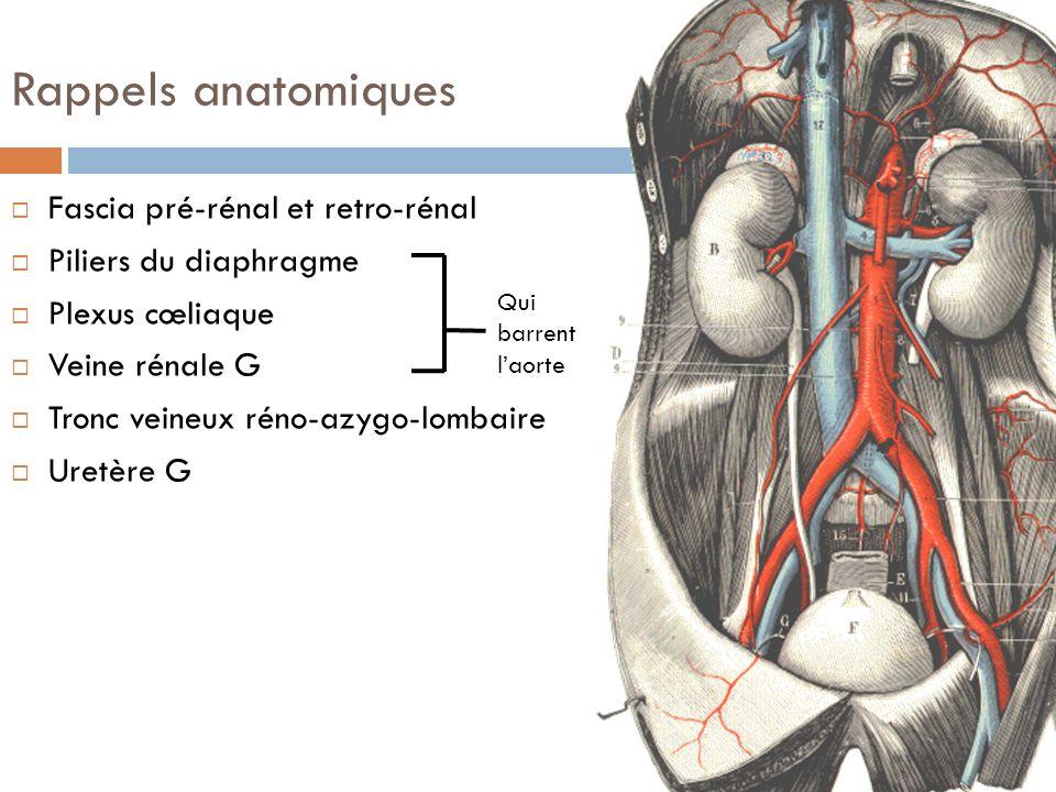 Rappels anatomiques Fascia pré-rénal et retro-rénal