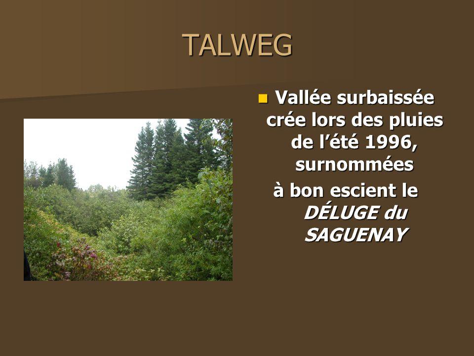 TALWEG Vallée surbaissée crée lors des pluies de l'été 1996, surnommées.
