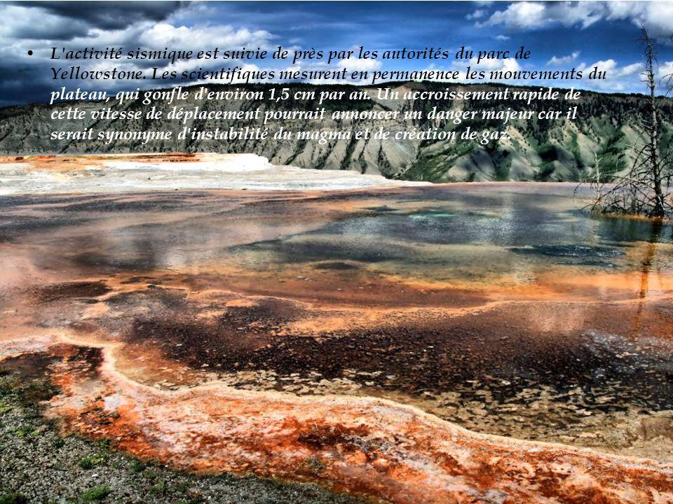 L activité sismique est suivie de près par les autorités du parc de Yellowstone.