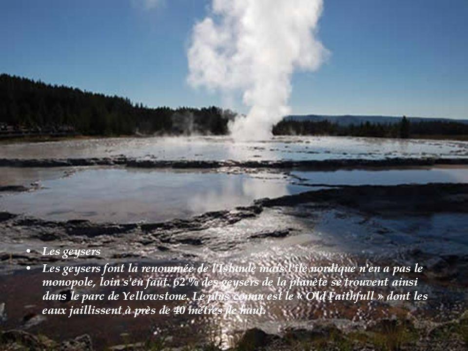 Les geysers