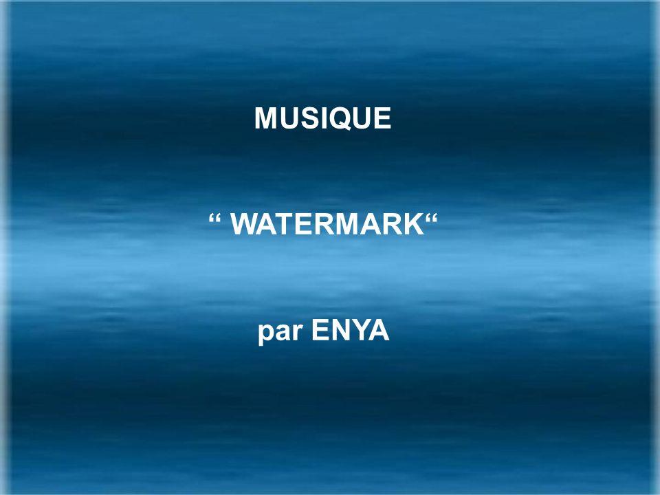 MUSIQUE WATERMARK par ENYA