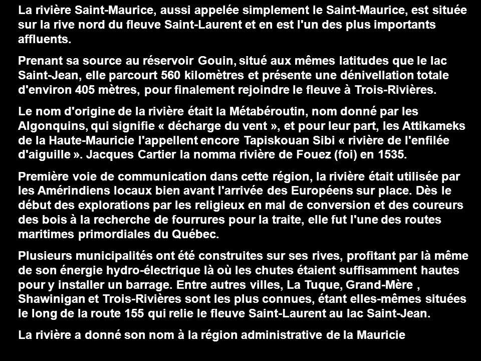 La rivière Saint-Maurice, aussi appelée simplement le Saint-Maurice, est située sur la rive nord du fleuve Saint-Laurent et en est l un des plus importants affluents.