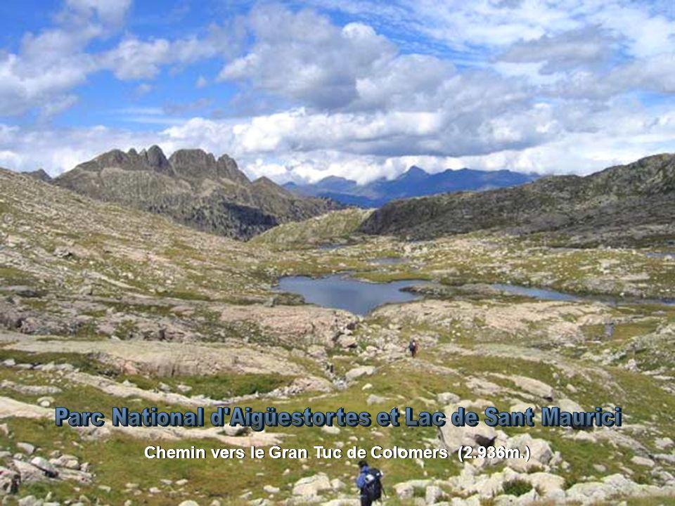 Chemin vers le Gran Tuc de Colomers (2.936m.)