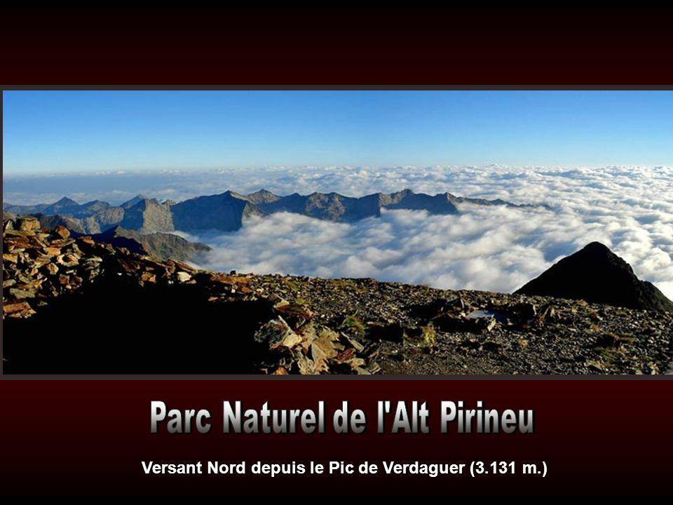 Versant Nord depuis le Pic de Verdaguer (3.131 m.)