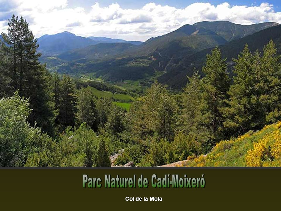 Parc Naturel de Cadí-Moixeró
