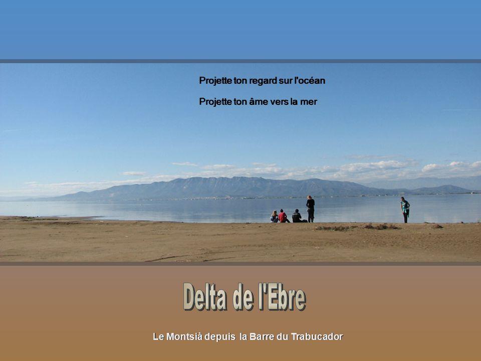 Le Montsià depuis la Barre du Trabucador