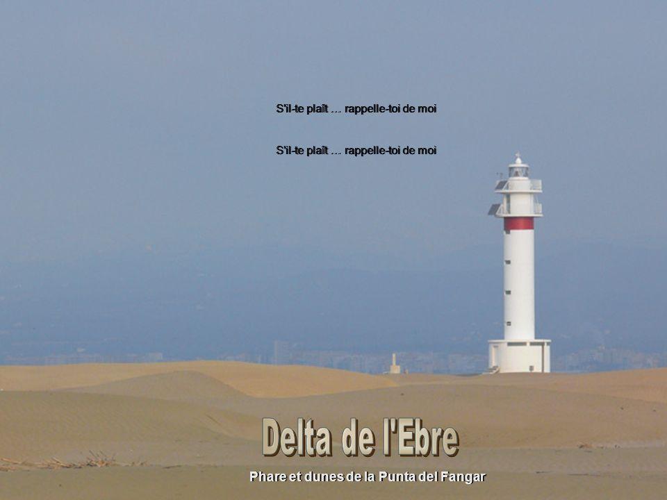 Phare et dunes de la Punta del Fangar