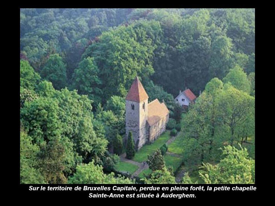 Sur le territoire de Bruxelles Capitale, perdue en pleine forêt, la petite chapelle Sainte-Anne est située à Auderghem.