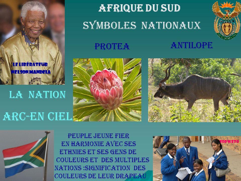 Symboles nationaux Arc-en ciel Afrique Du Sud La Nation Antilope