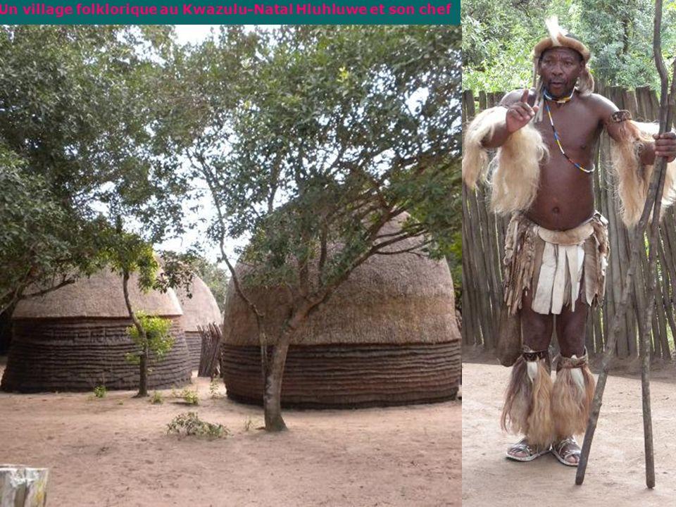Un village folklorique au Kwazulu-Natal Hluhluwe et son chef