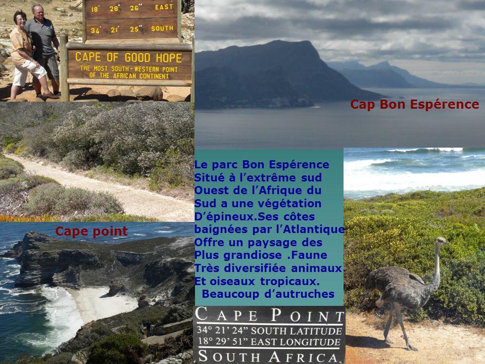 Cap Bon Espérence Cape point Le parc Bon Espérence