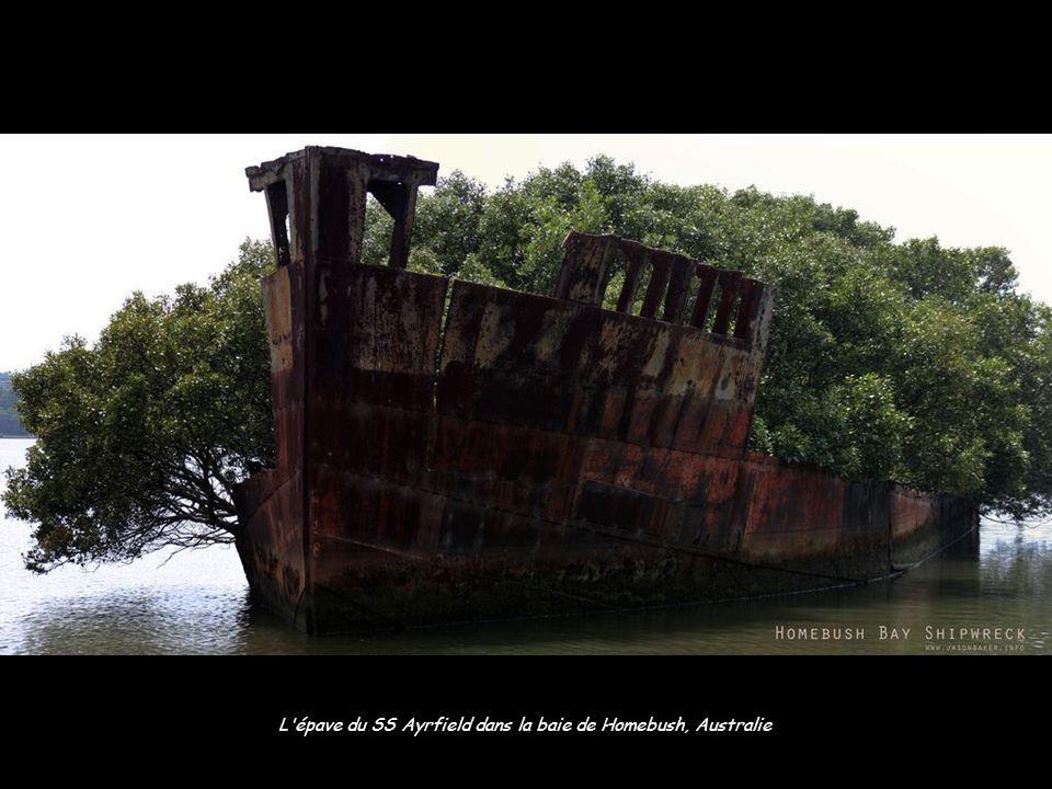 L épave du SS Ayrfield dans la baie de Homebush, Australie
