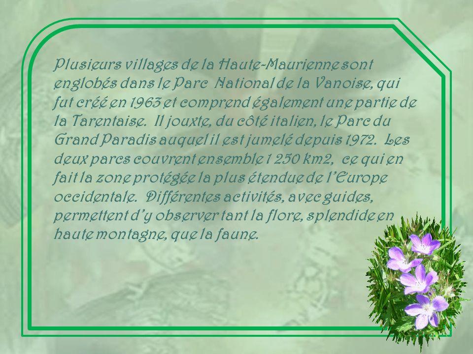Plusieurs villages de la Haute-Maurienne sont englobés dans le Parc National de la Vanoise, qui fut créé en 1963 et comprend également une partie de la Tarentaise.