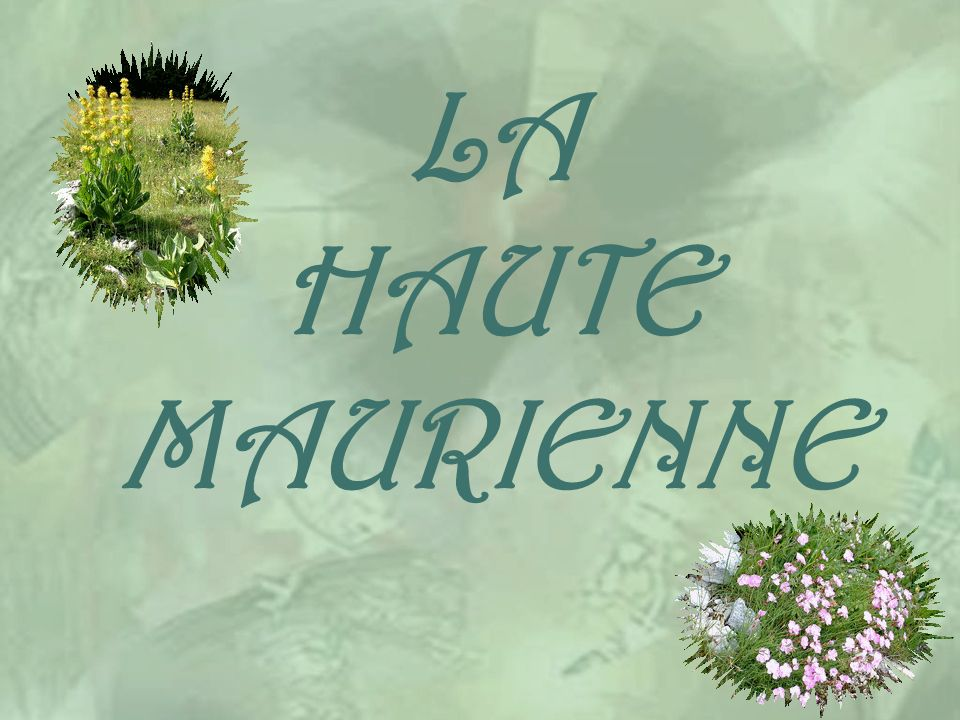 LA HAUTE MAURIENNE