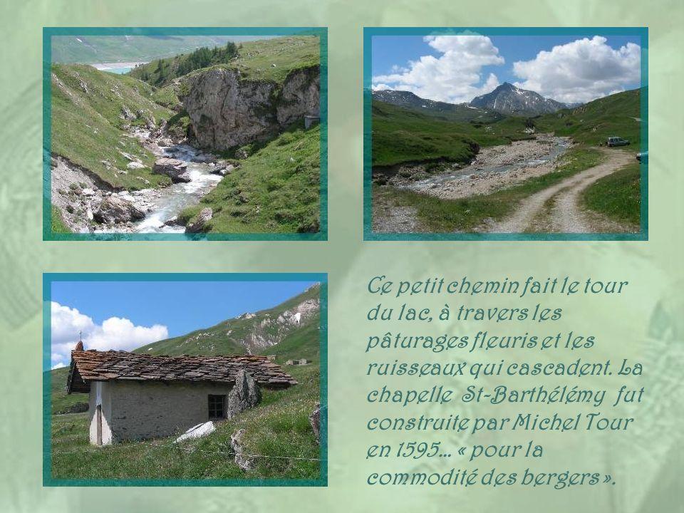 Ce petit chemin fait le tour du lac, à travers les pâturages fleuris et les ruisseaux qui cascadent.