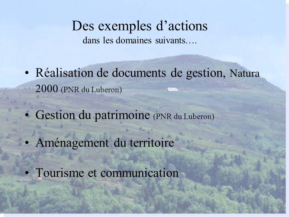 Des exemples d'actions dans les domaines suivants….