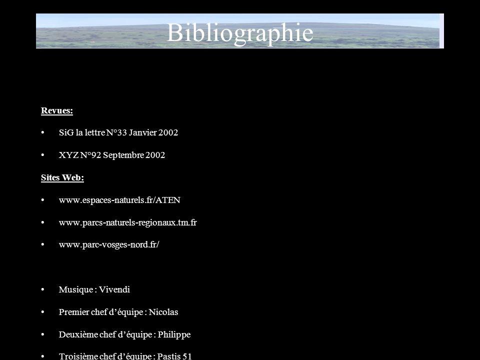 Bibliographie Revues: SiG la lettre N°33 Janvier 2002