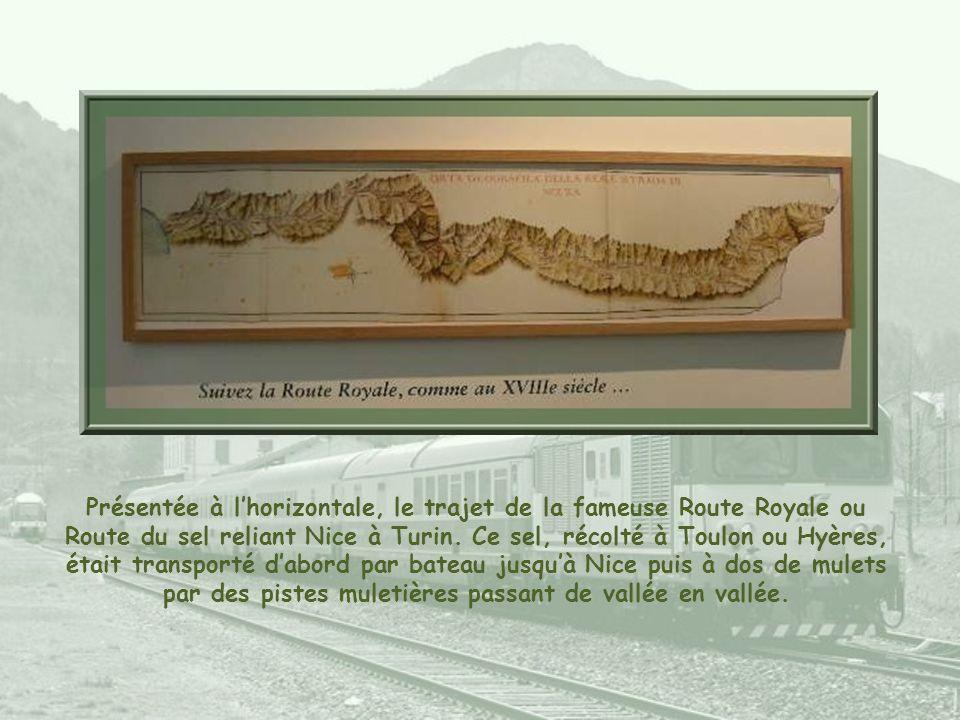 Présentée à l'horizontale, le trajet de la fameuse Route Royale ou Route du sel reliant Nice à Turin.