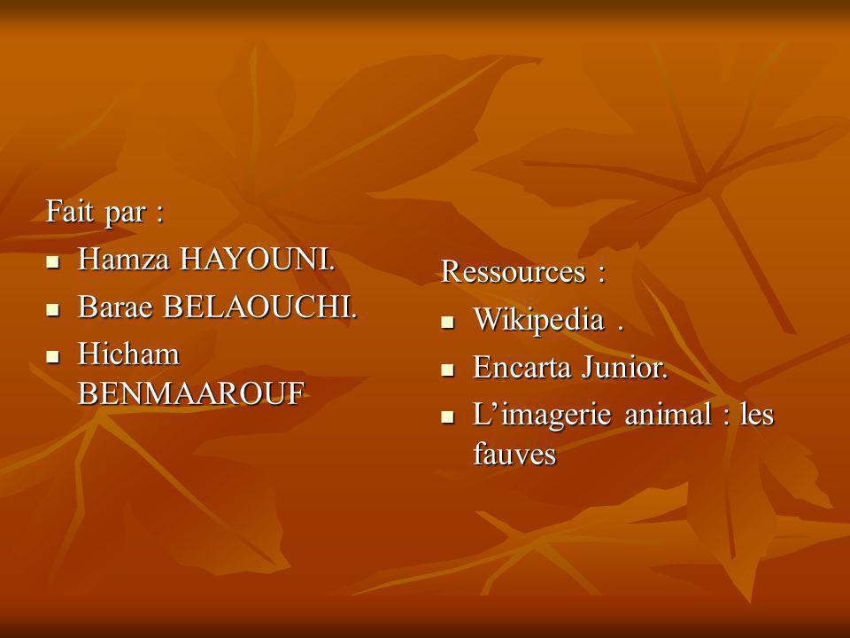 Fait par : Hamza HAYOUNI. Barae BELAOUCHI. Hicham BENMAAROUF. Ressources : Wikipedia . Encarta Junior.