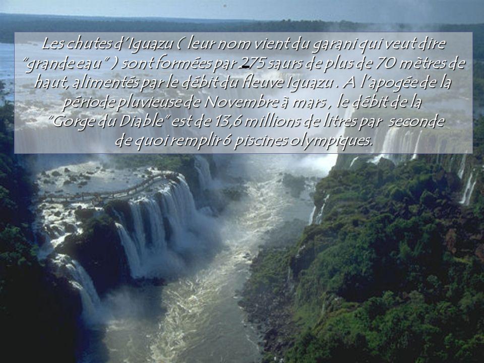 - Les chutes d'Iguazu ( leur nom vient du garani qui veut dire