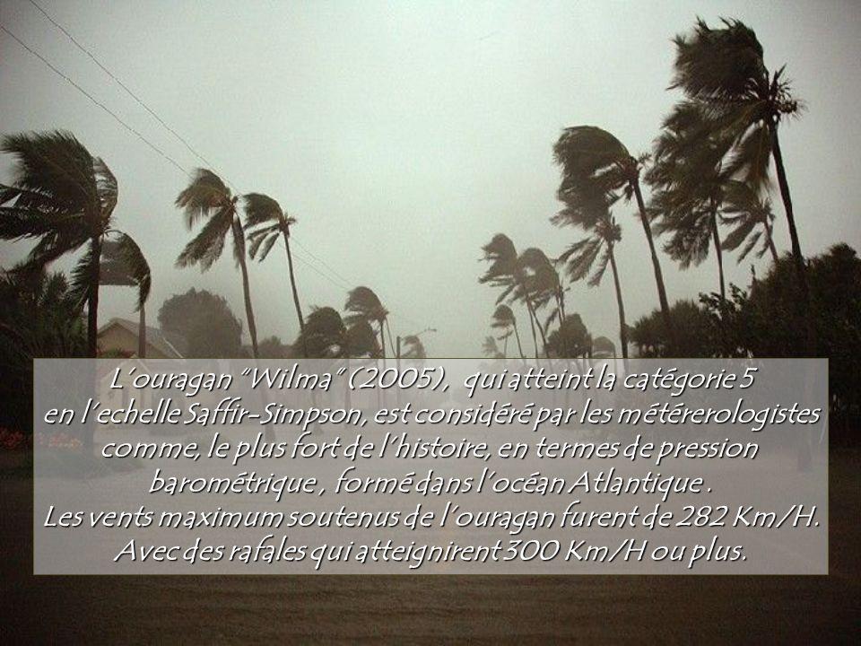 L'ouragan Wilma (2005), qui atteint la catégorie 5