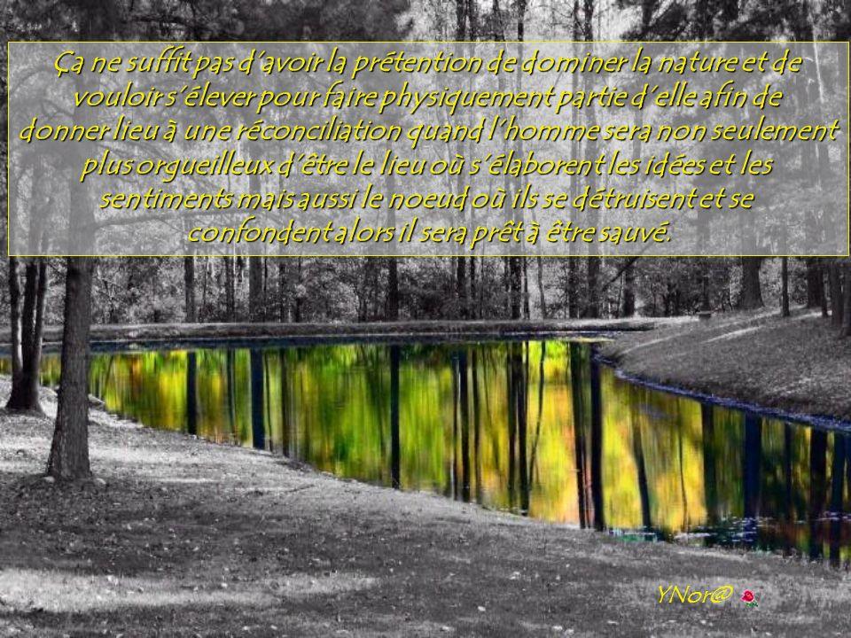 Ça ne suffit pas d'avoir la prétention de dominer la nature et de