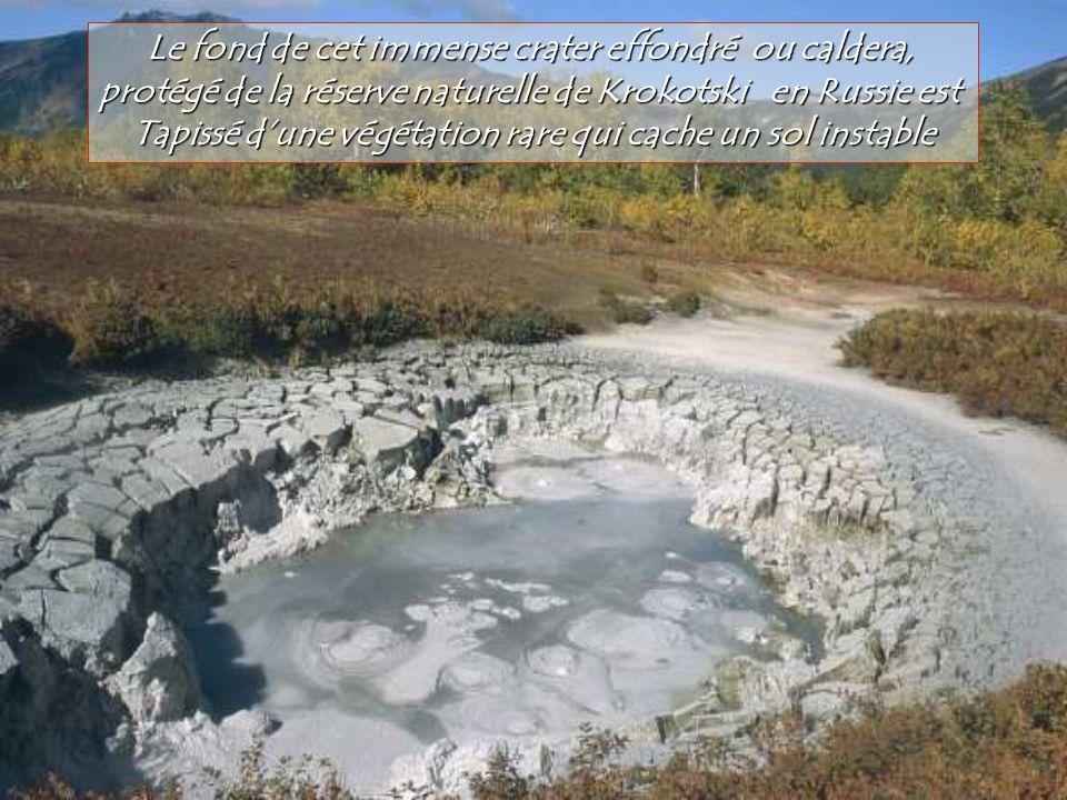 Le fond de cet immense crater effondré ou caldera,