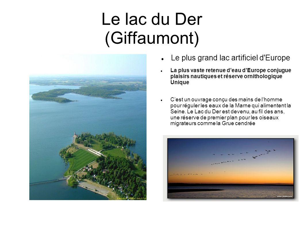 Le lac du Der (Giffaumont)