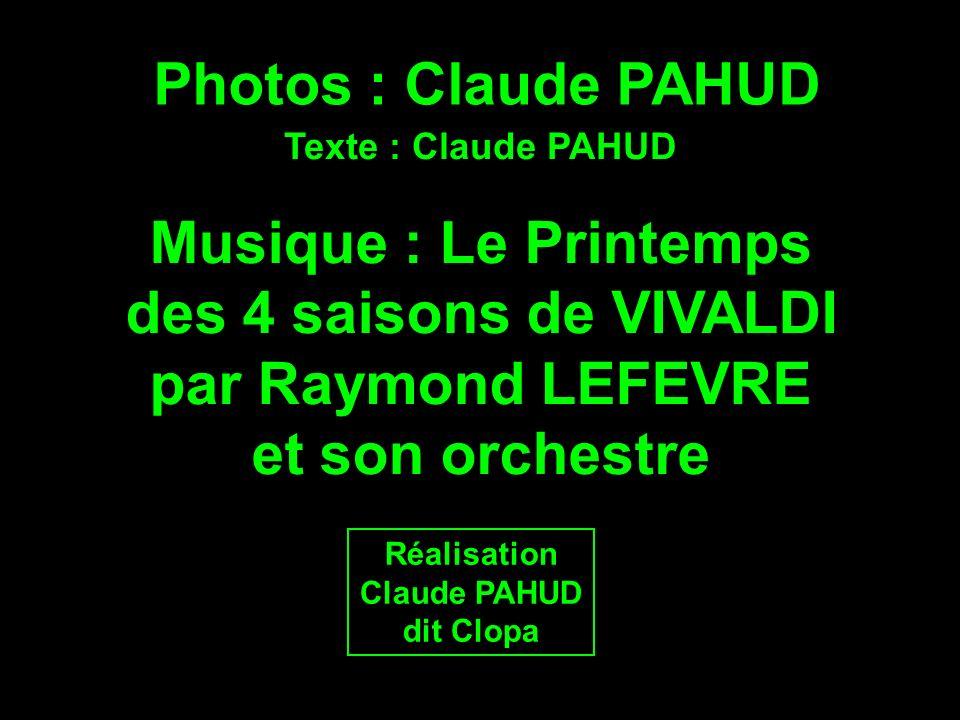 Photos : Claude PAHUD Musique : Le Printemps des 4 saisons de VIVALDI