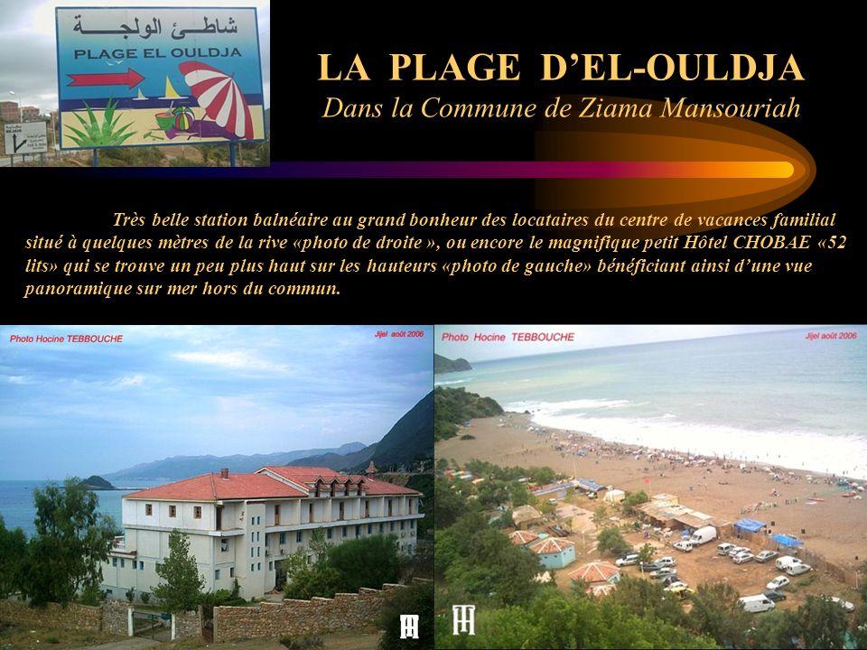 Dans la Commune de Ziama Mansouriah