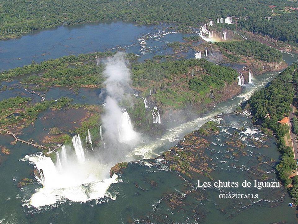Les chutes de Iguazu GUAZU FALLS